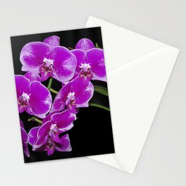 Graceful spray of deep pink orchids Stationery Cards