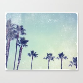 Palm prix Canvas Print