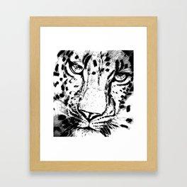 Leopard face Framed Art Print