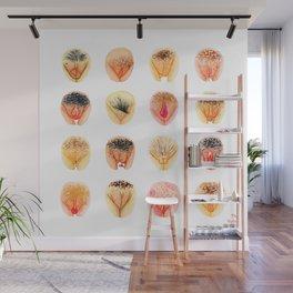 Vulva Diversity – Orange Wall Mural