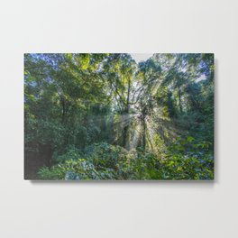 Sun Rays in a Forest Metal Print