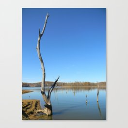 Patoka Lake Canvas Print
