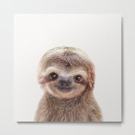 Baby Sloth, Baby Animals Art Print By Synplus Metal Print
