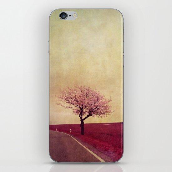 spring field iPhone & iPod Skin