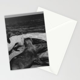 Water Puppies Stationery Cards