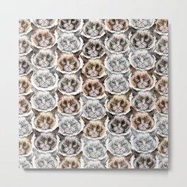 Angry Cats Metal Print