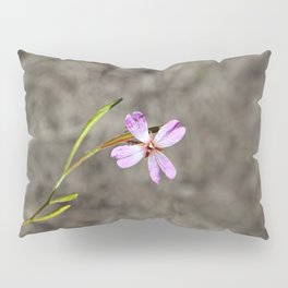 Pink in Idaho Pillow Sham
