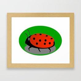 June beetle Framed Art Print