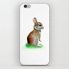 Rabit iPhone & iPod Skin