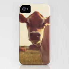 cow Slim Case iPhone (4, 4s)