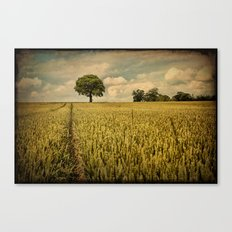 A Summers Walk Canvas Print