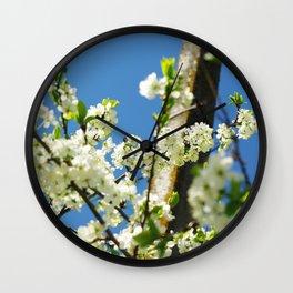 Blooming apple tree Wall Clock