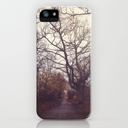 Autumn Dream iPhone Case