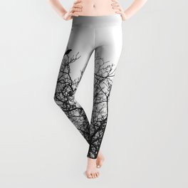 A murder of crows sitting in a tree Leggings