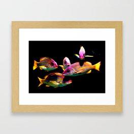 School of Fish Framed Art Print