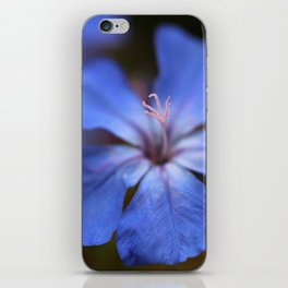 Forest Blue iPhone Skin
