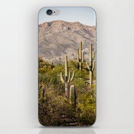Scenes from Arizona, No. 2 iPhone Skin