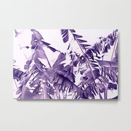 Banana Leaves Abstract In Blue And White Metal Print