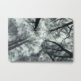 Disheveled Metal Print