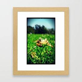Bee @ Work Framed Art Print