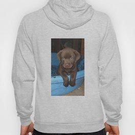 Labrador puppy Hoody