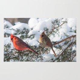 Sunny Winter Cardinals in the Adirondacks Rug