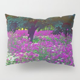 Wildflowers Daisies Shaded by Trees Fine Art Photo Pillow Sham