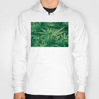 marijuana Hoodies featuring Marijuana Plants  by Limitless Design