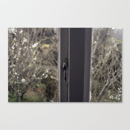 Divided View Canvas Print