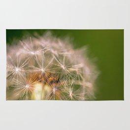 Snowglobe - Macro Photograph of Dandelion Rug