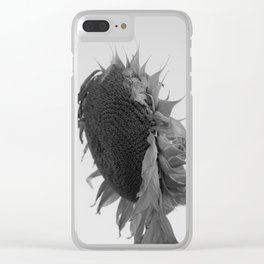 drooping sunflower Clear iPhone Case