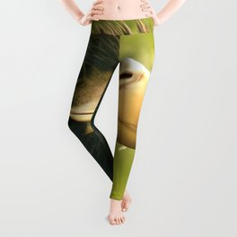 Golden Eagle Leggings