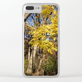 Pinnacle of Autumn Clear iPhone Case