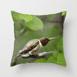 Hummingbird Hiding Throw Pillow