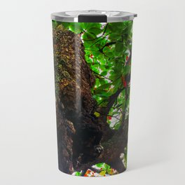 big tree with green leaves and red leaves Travel Mug