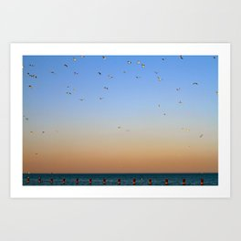 Seagulls Over Lake Michigan Art Print
