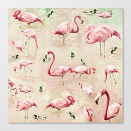 Flamingos Vintage Pink  Canvas Print