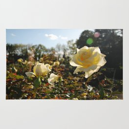 Rose Garden Sunshine Rug