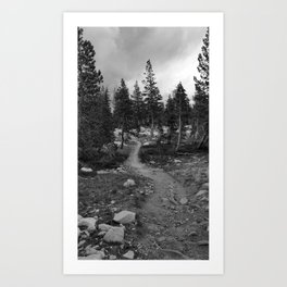 Pacific Crest Trail in August Art Print