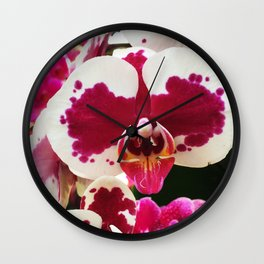 Miltonia Wall Clock
