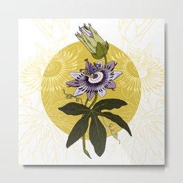 Passiflora edulis Metal Print