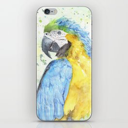 """Watercolor Painting of Picture """"Macaw"""" iPhone Skin"""