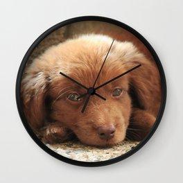 Potter's Cute Beginning: Sleepy Head Wall Clock