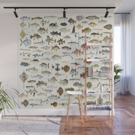 Fish N More Fish Wall Mural