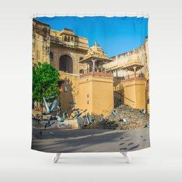 Pigeons at Amer Fort, Jaipur Shower Curtain
