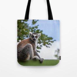 The lemur model Tote Bag
