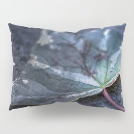 The way of time Pillow Sham