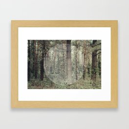 Cycle (Forest) Framed Art Print
