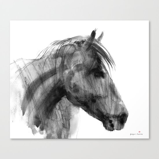Wild horse  Canvas Print