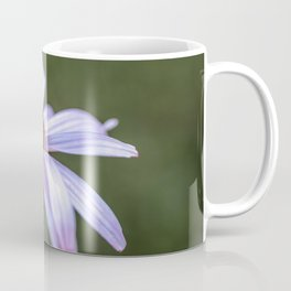 Summer Echinacea flower Coffee Mug